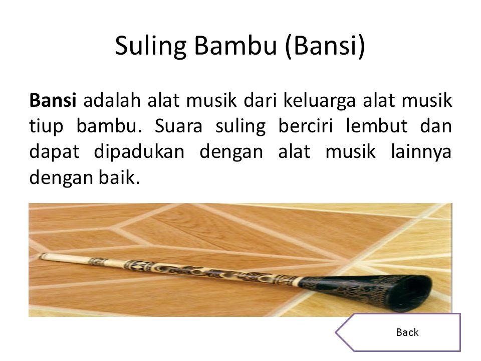 Hasil gambar untuk alat musik Bansi