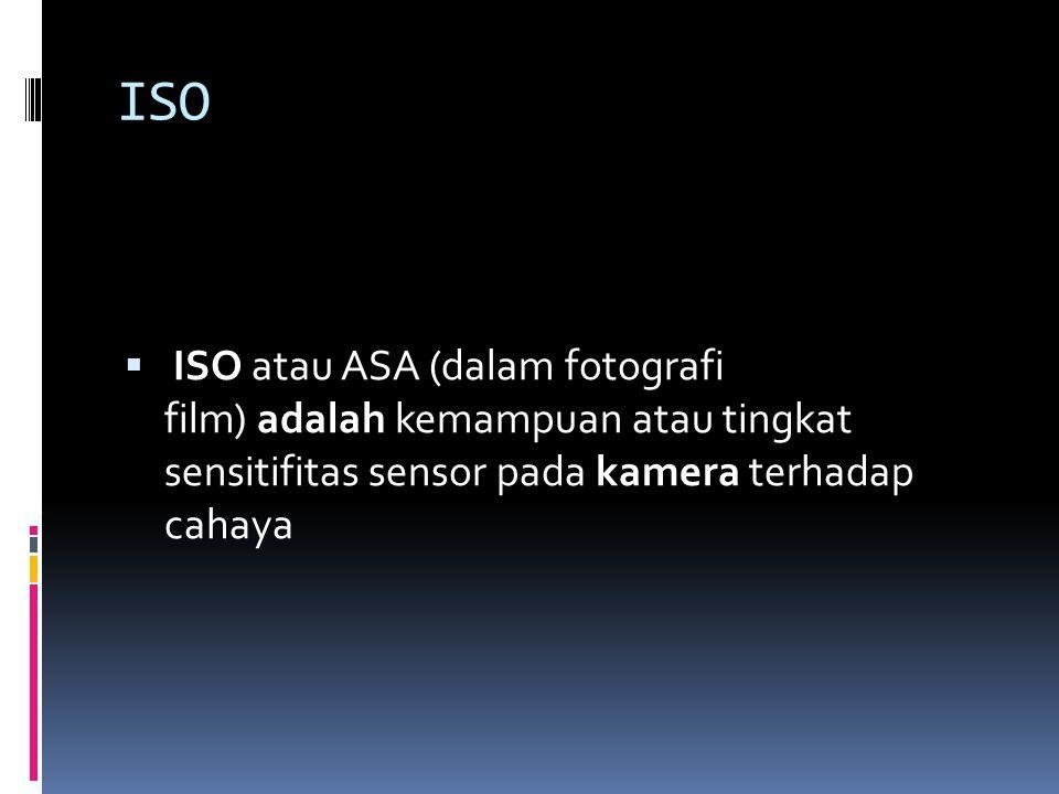 ISO  ISO atau ASA (dalam fotografi film) adalah kemampuan atau tingkat sensitifitas sensor pada kamera terhadap cahaya
