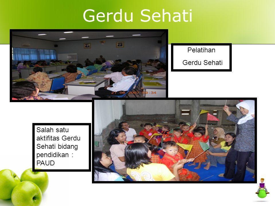 Gerdu Sehati Pelatihan Gerdu Sehati Salah satu aktifitas Gerdu Sehati bidang pendidikan : PAUD
