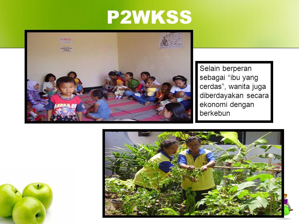 """P2WKSS Selain berperan sebagai """"ibu yang cerdas"""", wanita juga diberdayakan secara ekonomi dengan berkebun"""