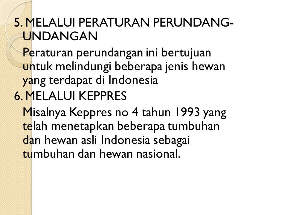5. MELALUI PERATURAN PERUNDANG- UNDANGAN Peraturan perundangan ini bertujuan untuk melindungi beberapa jenis hewan yang terdapat di Indonesia 6. MELAL