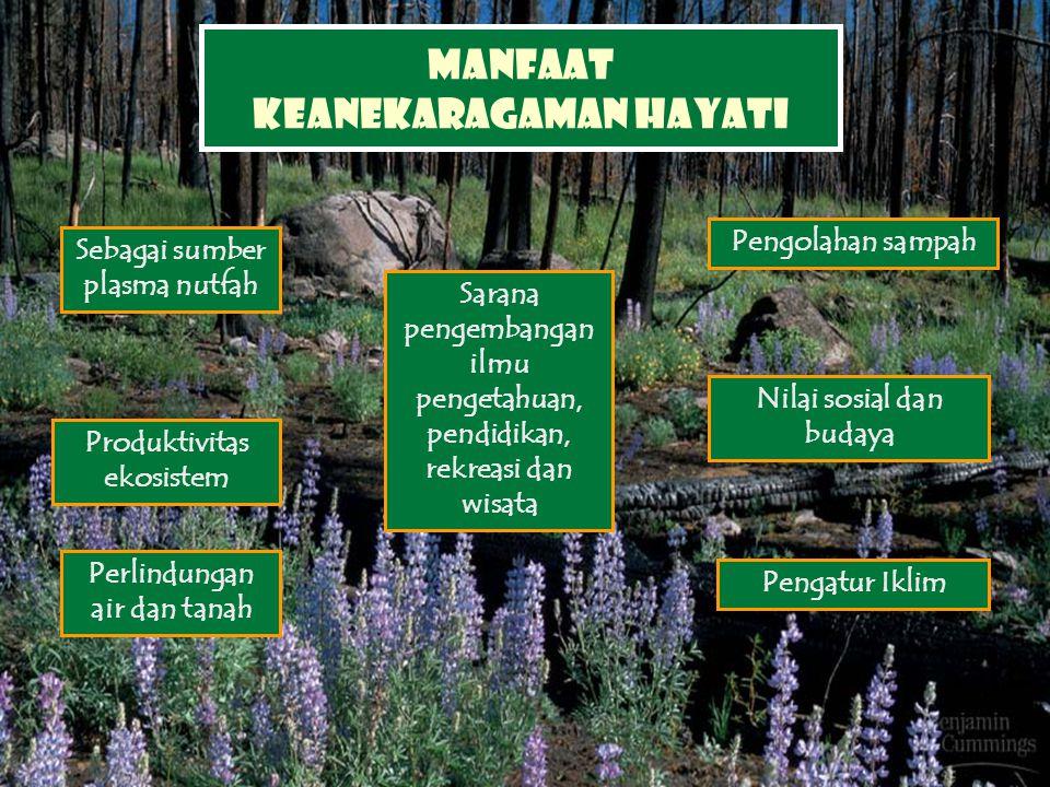 Manfaat keanekaragaman hayati Sebagai sumber plasma nutfah Produktivitas ekosistem Perlindungan air dan tanah Sarana pengembangan ilmu pengetahuan, pe