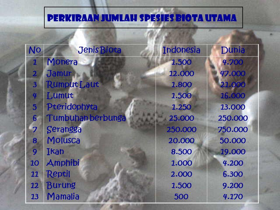 NoJenis BiotaIndonesiaDunia 1 2 3 4 5 6 7 8 9 10 11 12 13 Monera Jamur Rumput Laut Lumut Pteridophyta Tumbuhan berbunga Serangga Molusca Ikan Amphibi