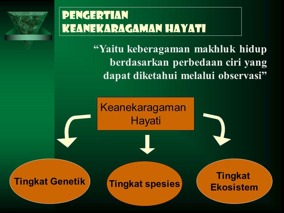 Keanekaragaman hayati di Indonesia  Indonesia merupakan negara megadiversitas  17-25% spesies makhluk hidup dunia terdapat di Indonesia  40.000 spesies tumbuhan, 350.000 spesies hewan, 12000 jenis jamur dan 1500 jenis monera terdapat di Indonesia Gn.