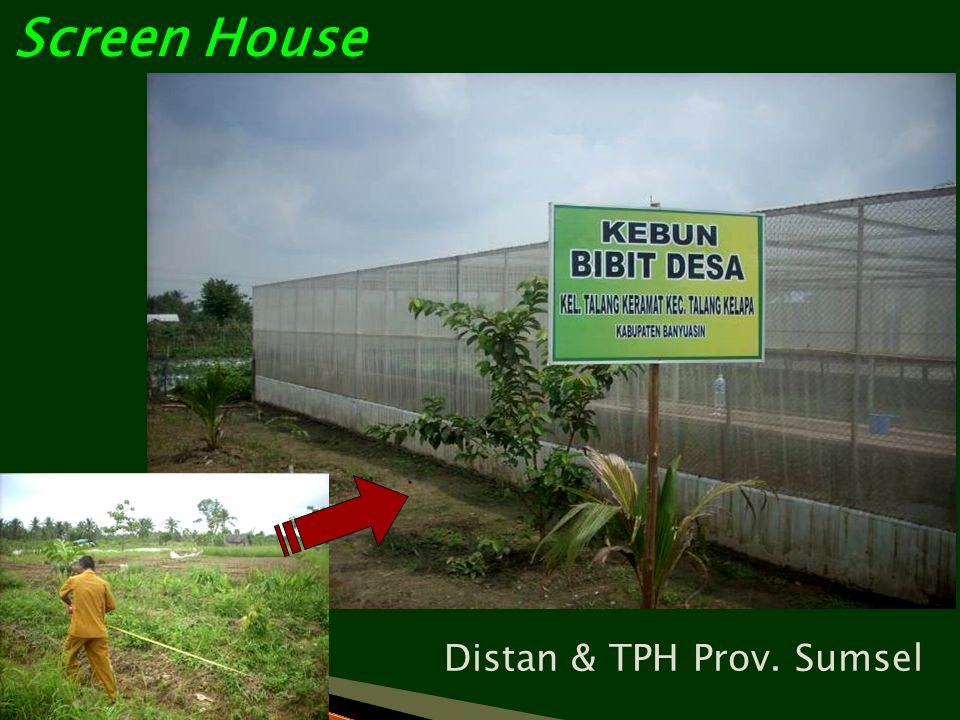Screen House Distan & TPH Prov. Sumsel