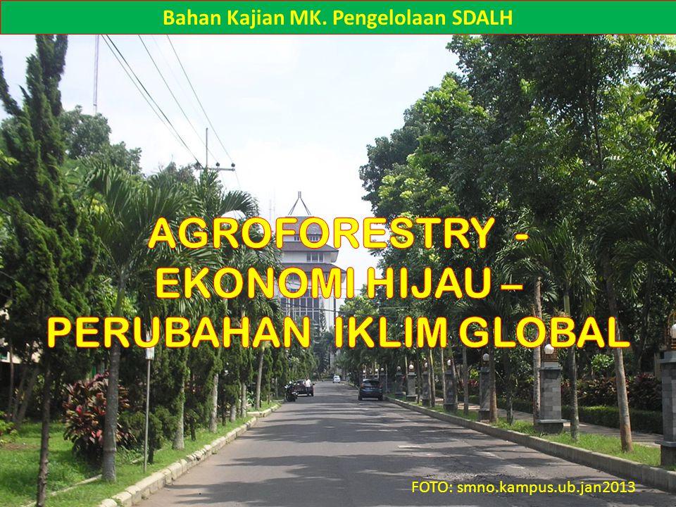 Empat Kategori Jasa-jasa Sistem Agroforestry: 1.