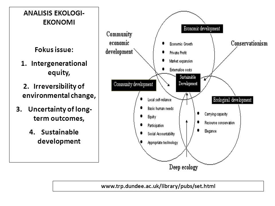 ANALISIS EKOLOGI- EKONOMI Fokus issue: 1.Intergenerational equity, 2.Irreversibility of environmental change, 3. Uncertainty of long- term outcomes, 4