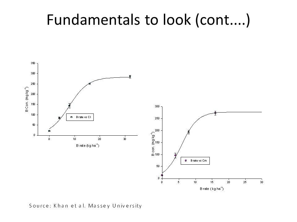 Fundamentals to look (cont....)