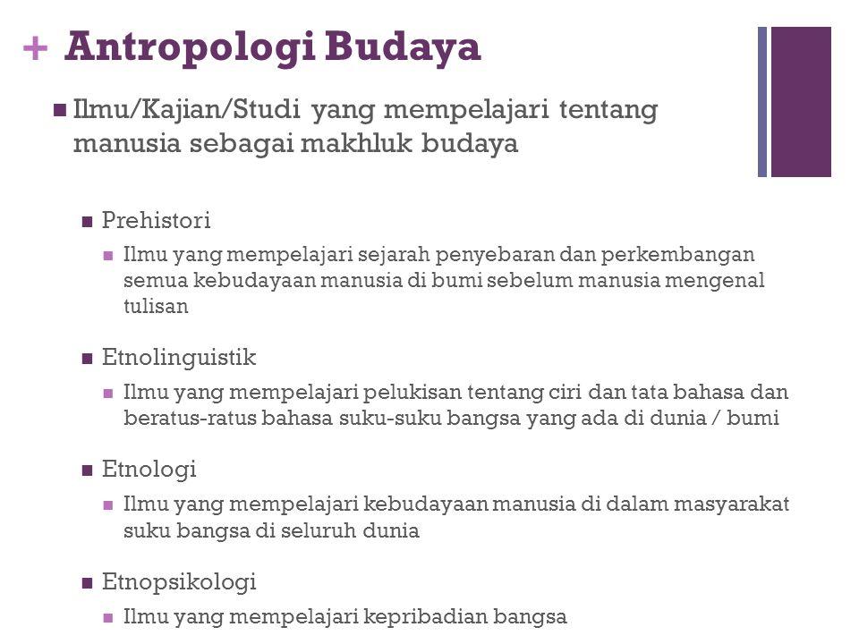+ Antropologi Fisik Ilmu/Studi/Kajian yang mempelajari tentang manusia sebagai organisme biologis Somatologi : Ilmu yang mempelajari keberagaman ras m
