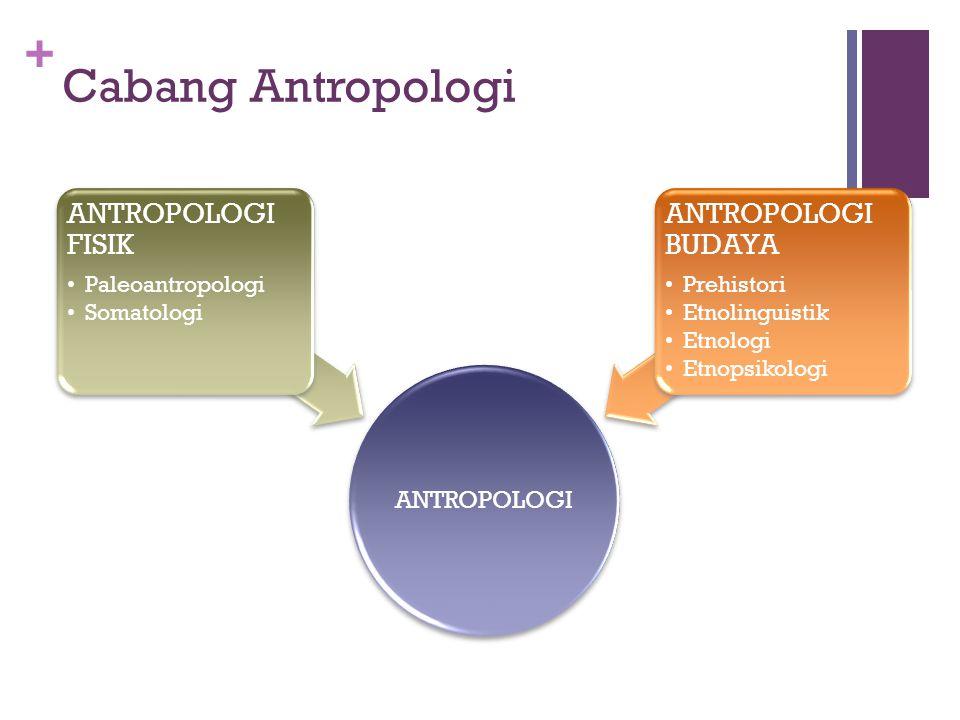+ Perhatian Antropologi Aspek-aspek itu menyangkut asal mula, perkembangan, sifat, dan ciri-ciri manusia serta kebudayaaannya Bekas-bekas kebudayaan m