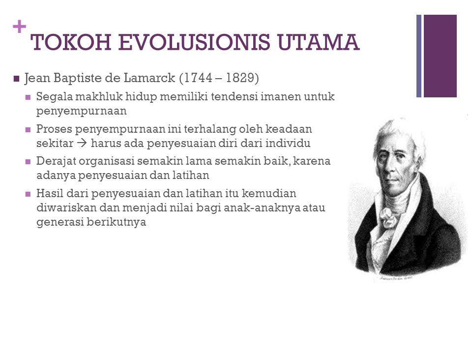 + EVOLUSI MANUSIA & PRIMATOLOGI Secara Harafiah  Perkembangan Evolusi adalah perkembangan yang terjadi secara berangsur- angsur secara lambat dari tingkat sederhana ke tingkat yang lebih maju dalam kurun waktu yang relatif lama Evolusi suatu teori / pandangan bahwa segala jenis makhluk hidup yang ada saat ini merupakan hasil perkembangan yang terjadi berangsur-angsur dari masa lampau