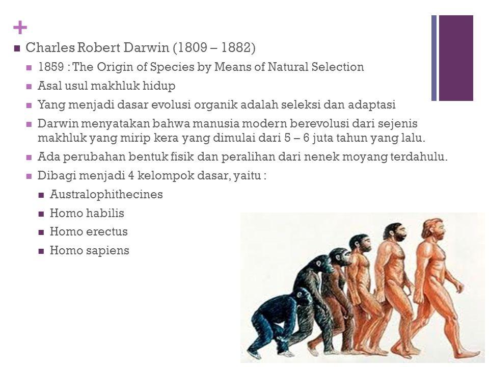 + TOKOH EVOLUSIONIS UTAMA Jean Baptiste de Lamarck (1744 – 1829) Segala makhluk hidup memiliki tendensi imanen untuk penyempurnaan Proses penyempurnaa