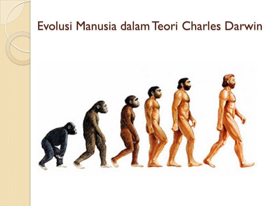 Evolusi Manusia dalam Teori Charles Darwin