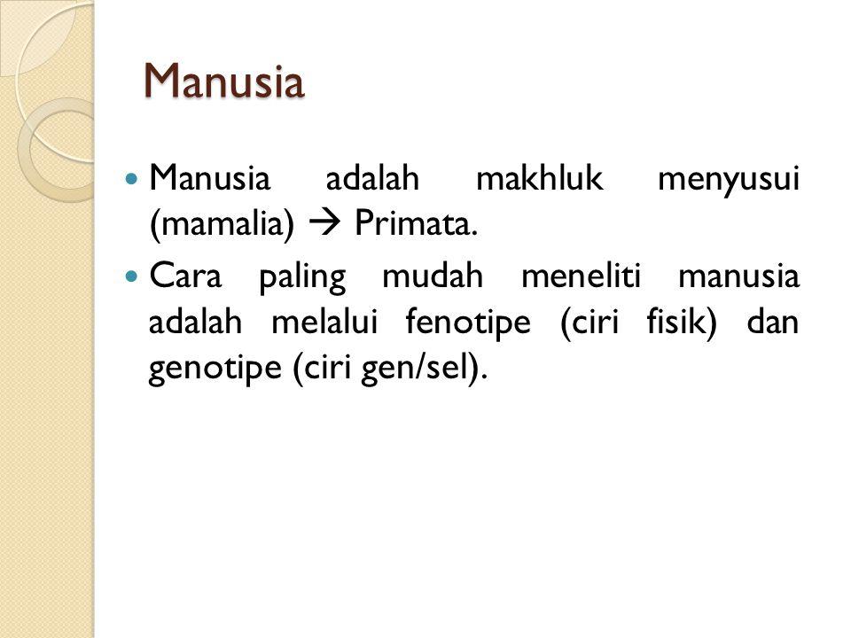 Manusia Manusia adalah makhluk menyusui (mamalia)  Primata. Cara paling mudah meneliti manusia adalah melalui fenotipe (ciri fisik) dan genotipe (cir