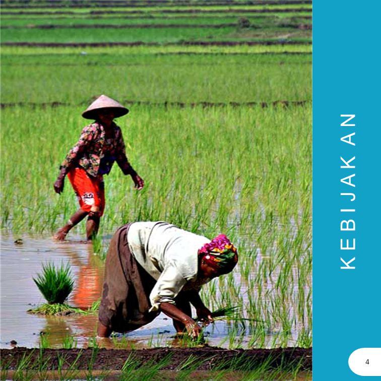 ARAHAN PEMBANGUNAN PERDESAAN (1) UU No.17/2007 Visi Pembangunan Nasional : INDONESIA YANG MANDIRI, MAJU, ADIL DAN MAKMUR Misi Pembangunan Nasional yang terkait dengan pembangunan perdesaan adalah: 1.Mewujudkan bangsa yang berdaya saing 2.Mewujudkan pemerataan pembangunan dan berkeadilan 3.Mewujudkan Indonesia Asri dan Lestari RPJMN 2 Tahun 2010 – 2014 menjadi arahan program kementerian/lembaga dan lintas kementerian/lembaga, kewilayahan dan lintas kewilayahan, serta kerangka ekonomi makro.