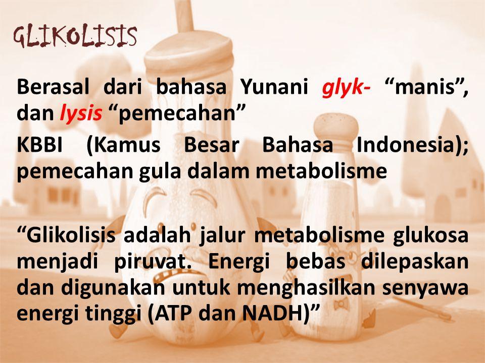 """GLIKOLISIS Berasal dari bahasa Yunani glyk- """"manis"""", dan lysis """"pemecahan"""" KBBI (Kamus Besar Bahasa Indonesia); pemecahan gula dalam metabolisme """"Glik"""