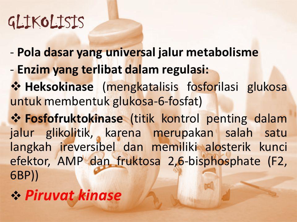 - Pola dasar yang universal jalur metabolisme - Enzim yang terlibat dalam regulasi:  Heksokinase (mengkatalisis fosforilasi glukosa untuk membentuk g