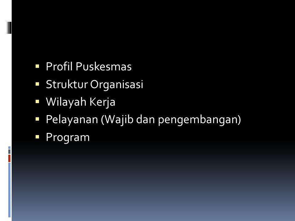  Profil Puskesmas  Struktur Organisasi  Wilayah Kerja  Pelayanan (Wajib dan pengembangan)  Program
