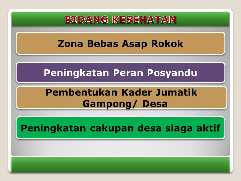Zona Bebas Asap Rokok Peningkatan Peran Posyandu Pembentukan Kader Jumatik Gampong/ Desa Peningkatan cakupan desa siaga aktif