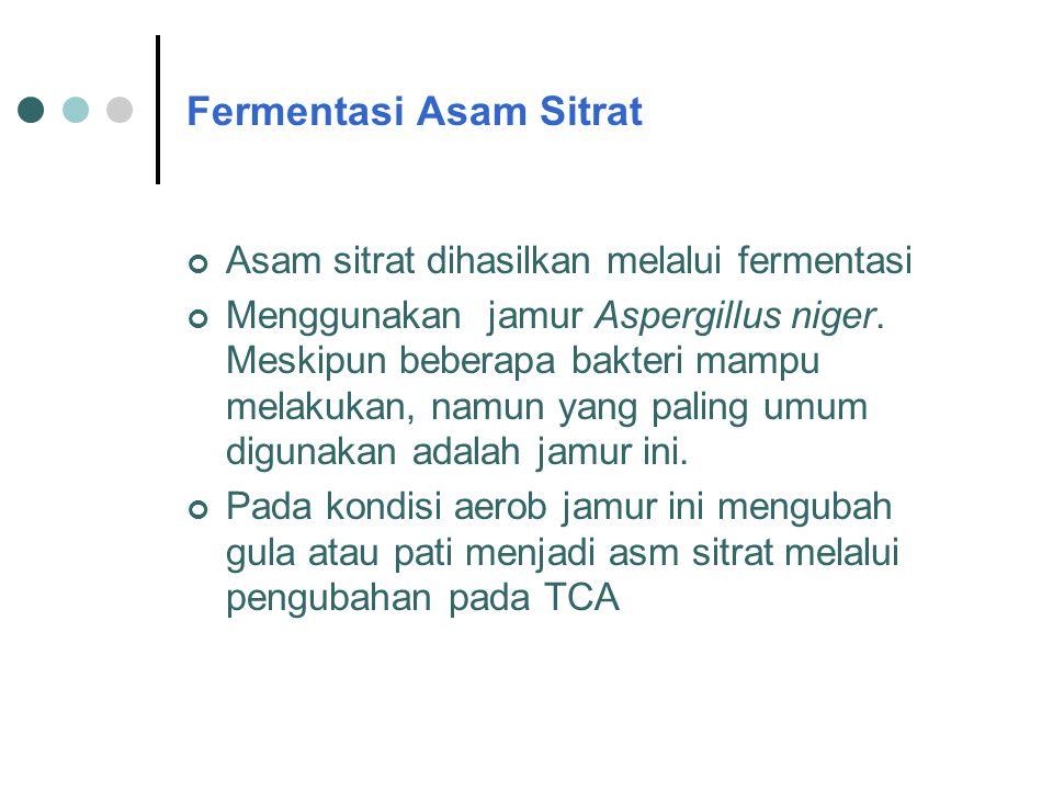 Fermentasi Asam Sitrat Asam sitrat dihasilkan melalui fermentasi Menggunakan jamur Aspergillus niger. Meskipun beberapa bakteri mampu melakukan, namun