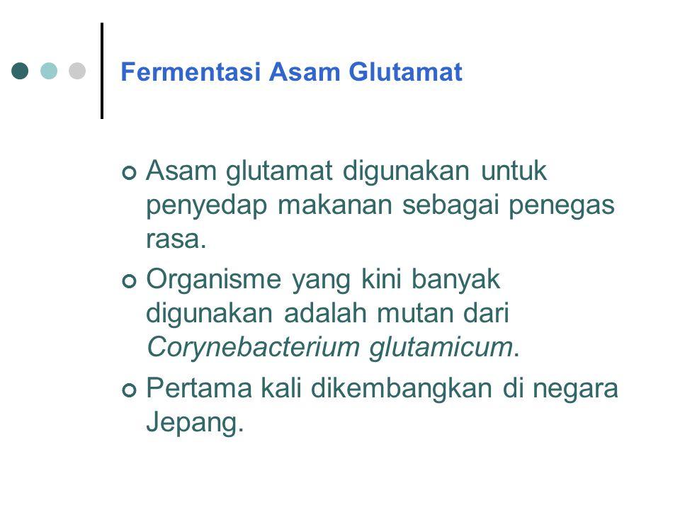 Fermentasi Asam Glutamat Asam glutamat digunakan untuk penyedap makanan sebagai penegas rasa. Organisme yang kini banyak digunakan adalah mutan dari C