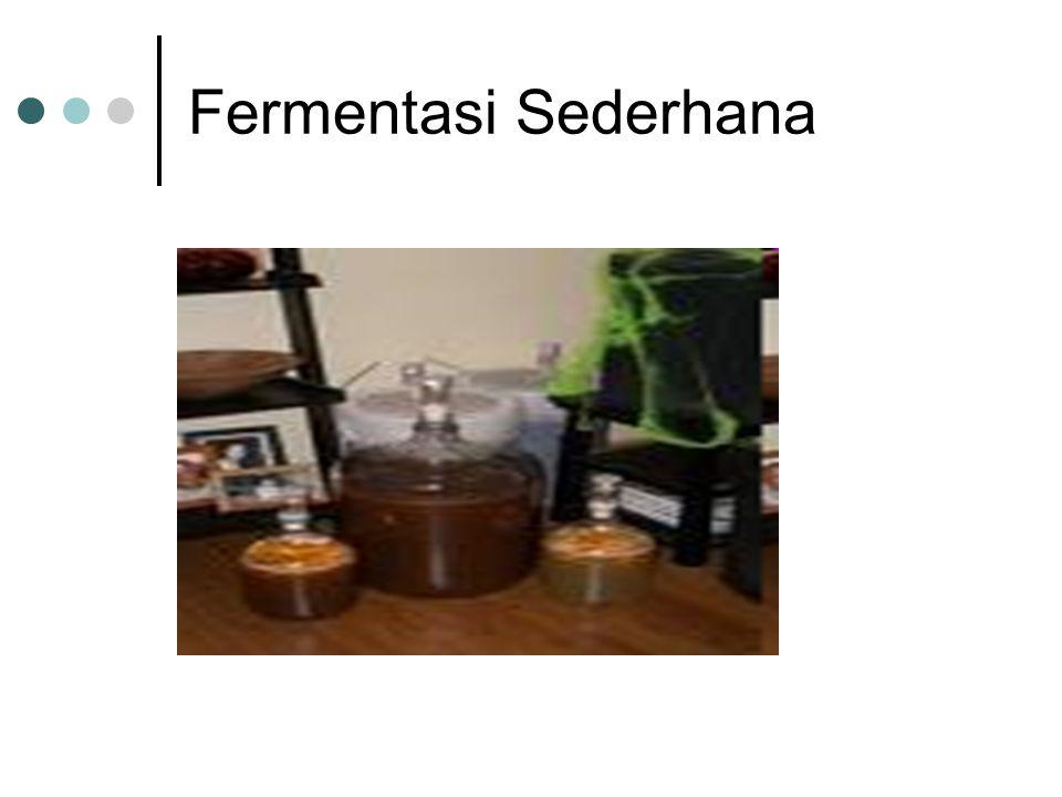 Fermentasi Sederhana