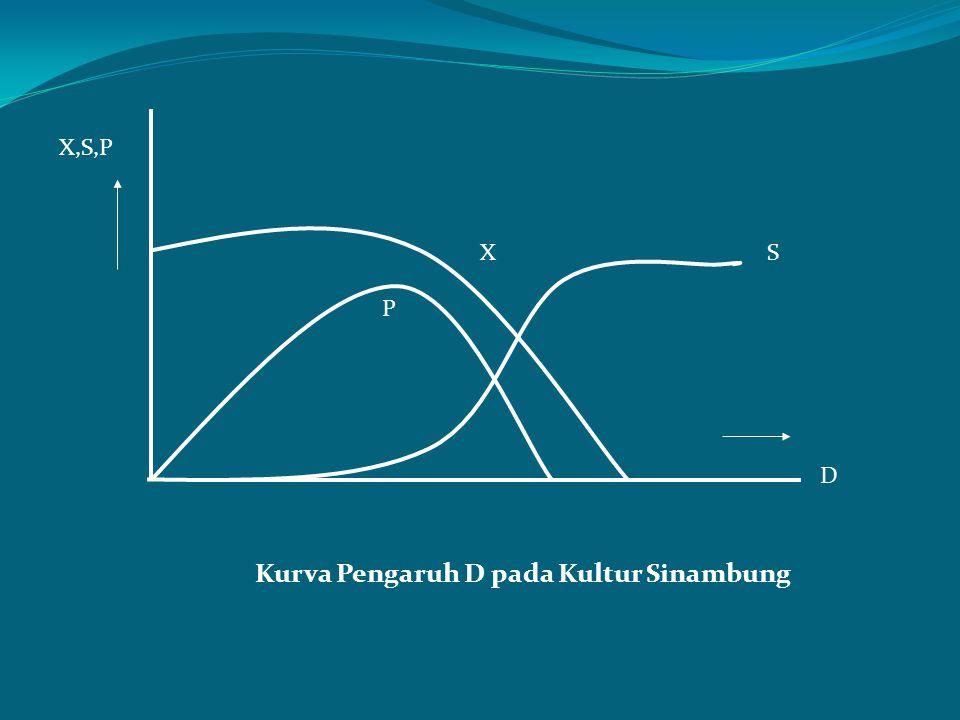 X,S,P P XS D Kurva Pengaruh D pada Kultur Sinambung