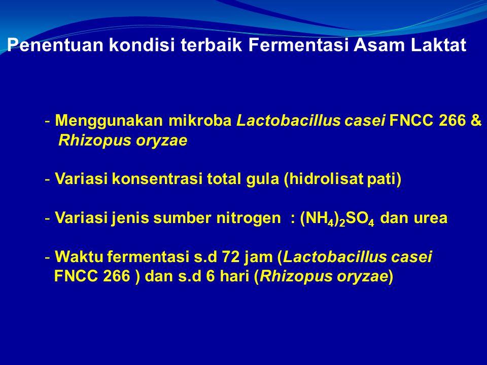 Penentuan kondisi terbaik Fermentasi Asam Laktat - Menggunakan mikroba Lactobacillus casei FNCC 266 & Rhizopus oryzae - Variasi konsentrasi total gula (hidrolisat pati) - Variasi jenis sumber nitrogen : (NH 4 ) 2 SO 4 dan urea - Waktu fermentasi s.d 72 jam (Lactobacillus casei FNCC 266 ) dan s.d 6 hari (Rhizopus oryzae)