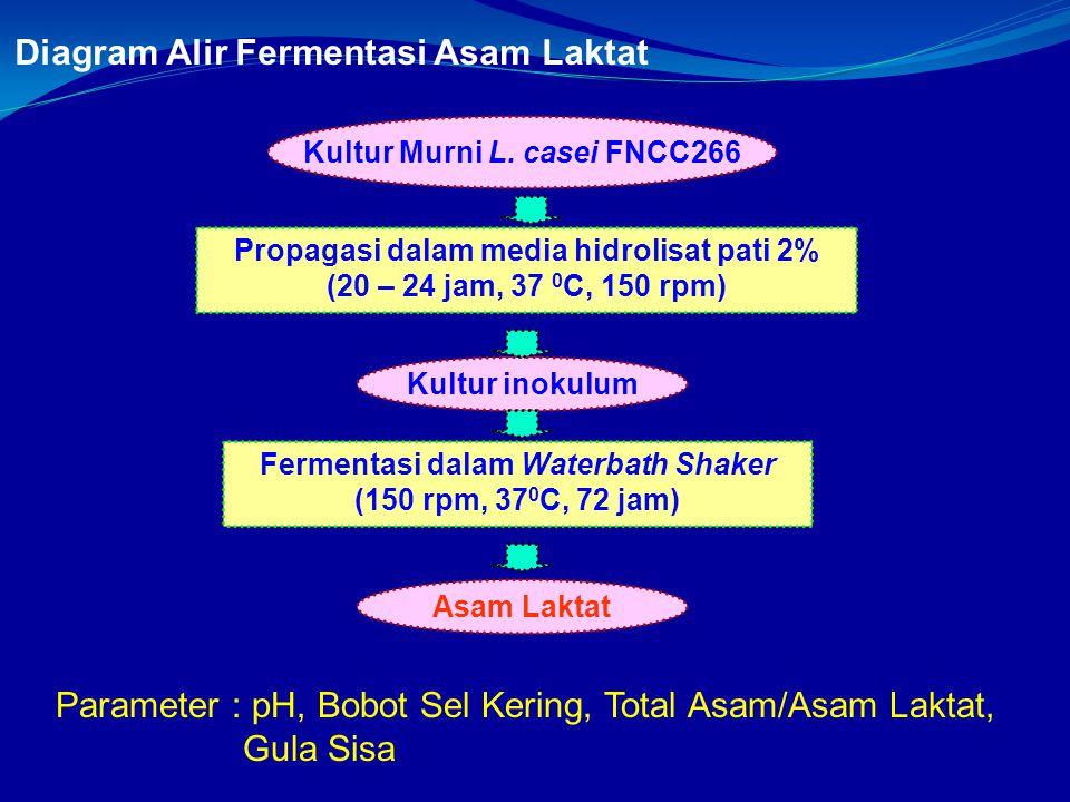 Diagram Alir Fermentasi Asam Laktat Propagasi dalam media hidrolisat pati 2% (20 – 24 jam, 37 0 C, 150 rpm) Kultur Murni L. casei FNCC266 Kultur inoku