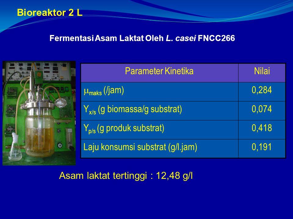 Fermentasi Asam Laktat Oleh L. casei FNCC266 Parameter KinetikaNilai  maks (/jam) 0,284 Y x/s (g biomassa/g substrat)0,074 Y p/s (g produk substrat)0