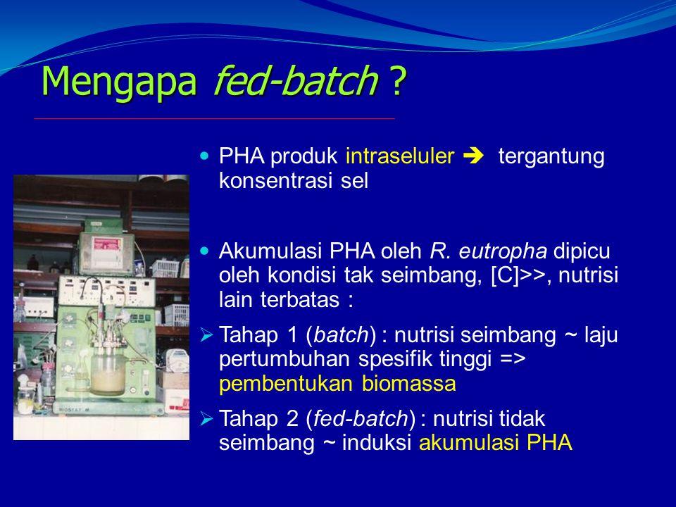 Mengapa fed-batch ? PHA produk intraseluler  tergantung konsentrasi sel Akumulasi PHA oleh R. eutropha dipicu oleh kondisi tak seimbang, [C]>>, nutri