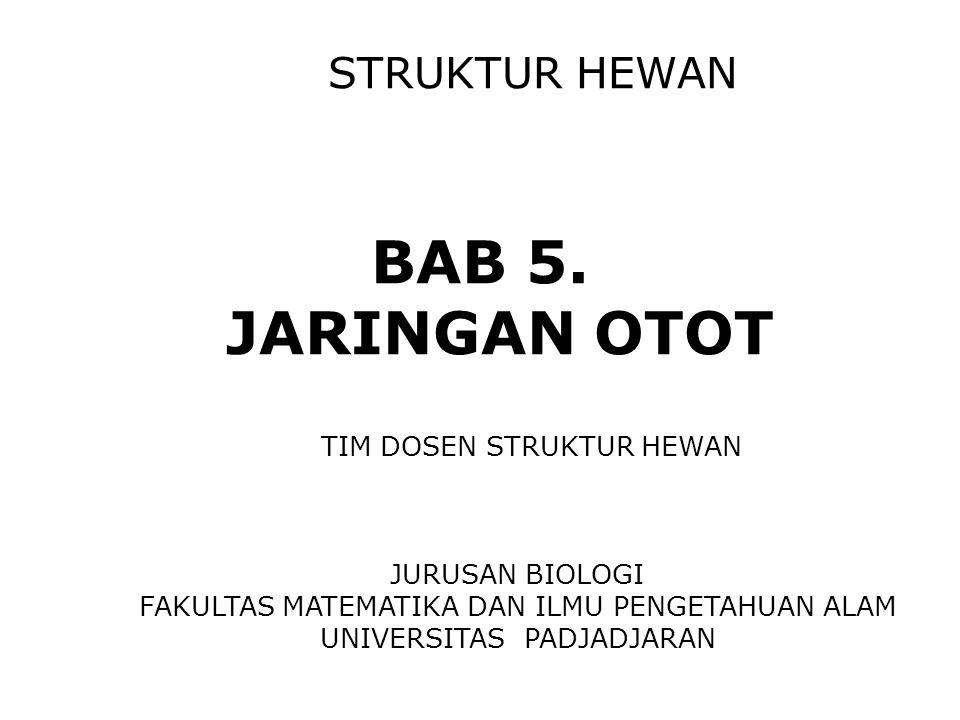 STRUKTUR HEWAN BAB 5. JARINGAN OTOT TIM DOSEN STRUKTUR HEWAN JURUSAN BIOLOGI FAKULTAS MATEMATIKA DAN ILMU PENGETAHUAN ALAM UNIVERSITAS PADJADJARAN