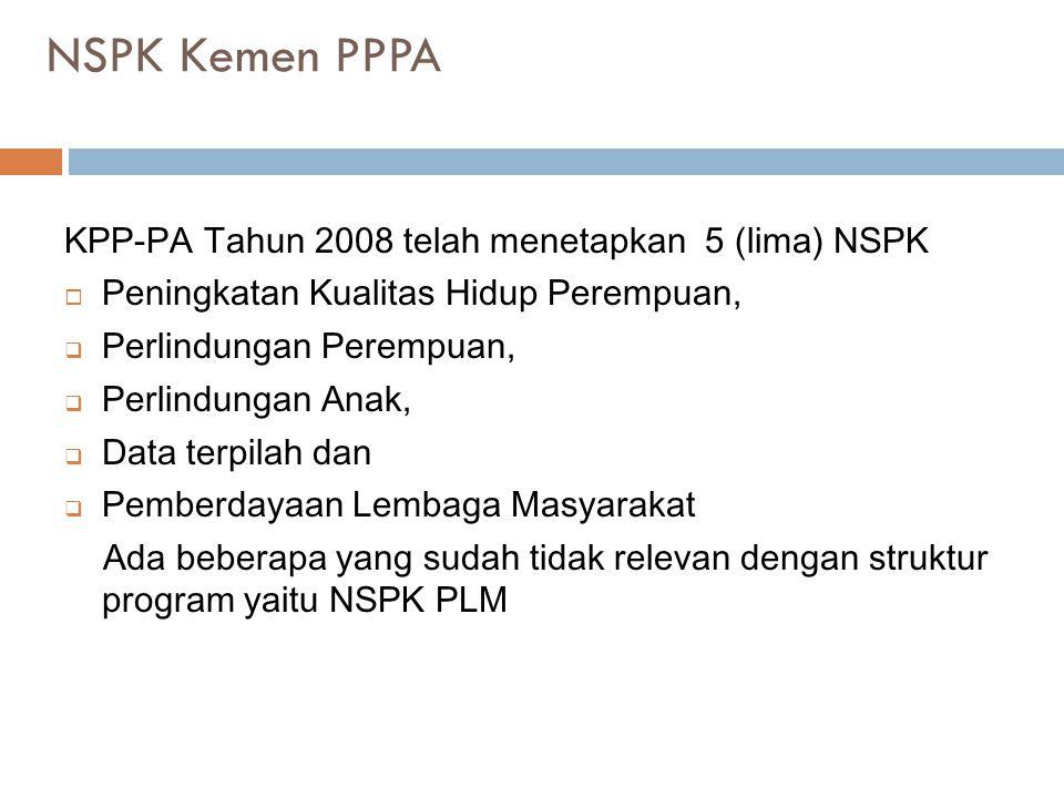 NSPK Kemen PPPA KPP-PA Tahun 2008 telah menetapkan 5 (lima) NSPK  Peningkatan Kualitas Hidup Perempuan,  Perlindungan Perempuan,  Perlindungan Anak