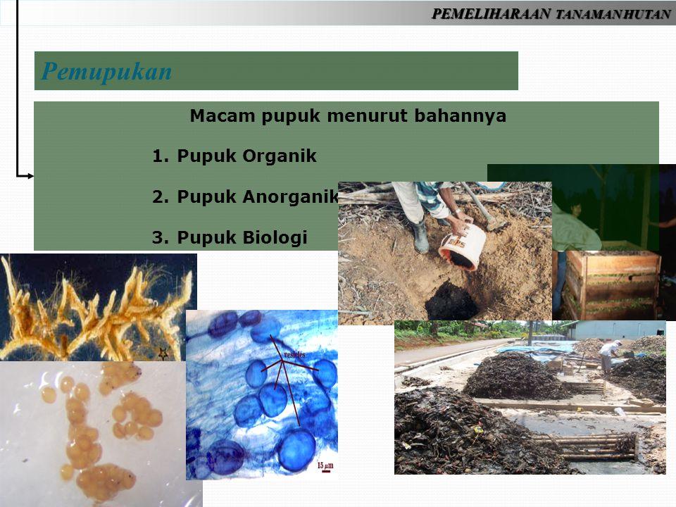 PEMELIHARAAN TANAMAN HUTAN Macam pupuk menurut bahannya 1.Pupuk Organik 2.Pupuk Anorganik 3.Pupuk Biologi Pemupukan