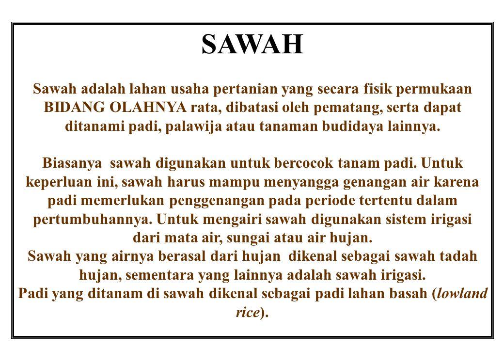 SAWAH Sawah adalah lahan usaha pertanian yang secara fisik permukaan BIDANG OLAHNYA rata, dibatasi oleh pematang, serta dapat ditanami padi, palawija