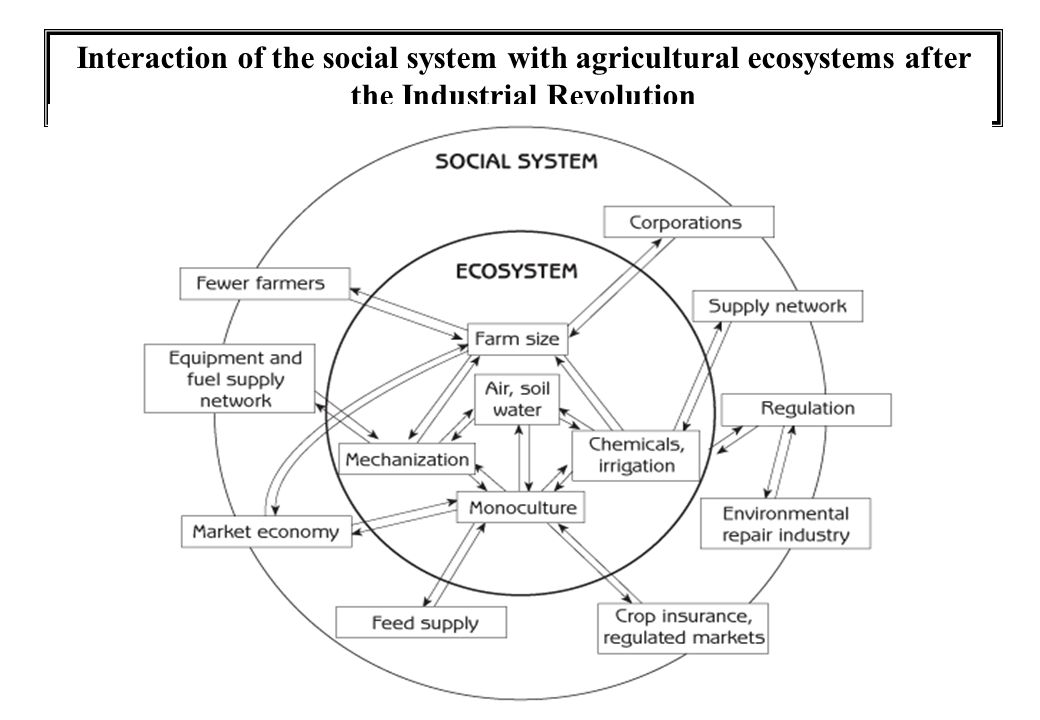 Interaction of the social system with agricultural ecosystems after the Industrial Revolution