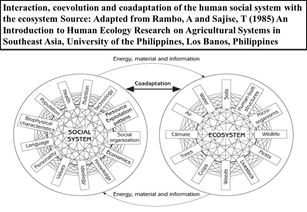 Interaction, coevolution and coadaptation of the human social system with the ecosystem Source: Adapted from Rambo, A and Sajise, T (1985) An Introduc