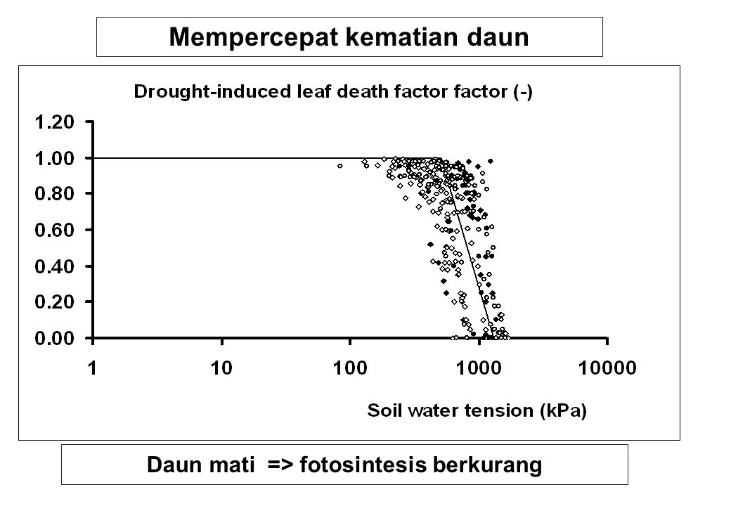 Mempercepat kematian daun Daun mati => fotosintesis berkurang