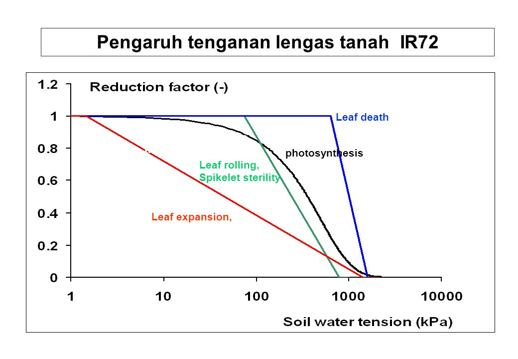 Leaf expansion, Leaf death Leaf rolling, Spikelet sterility Leaf photosynthesis, transpiration Pengaruh tenganan lengas tanah IR72 photosynthesis