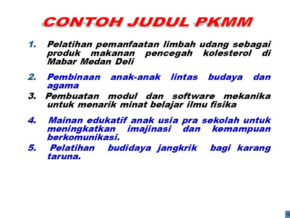 1.Pelatihan pemanfaatan limbah udang sebagai produk makanan pencegah kolesterol di Mabar Medan Deli 2.Pembinaan anak-anak lintas budaya dan agama 3. P