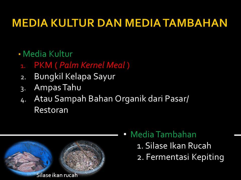 Media Kultur 1.PKM ( Palm Kernel Meal ) 2. Bungkil Kelapa Sayur 3.