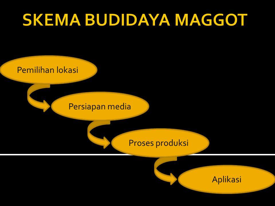 SARAN PERLU DILAKUKAN PENELITIAN MEDIA ALTERNATIF YANG MENUNJANG PRODUKSI MAGGOT.
