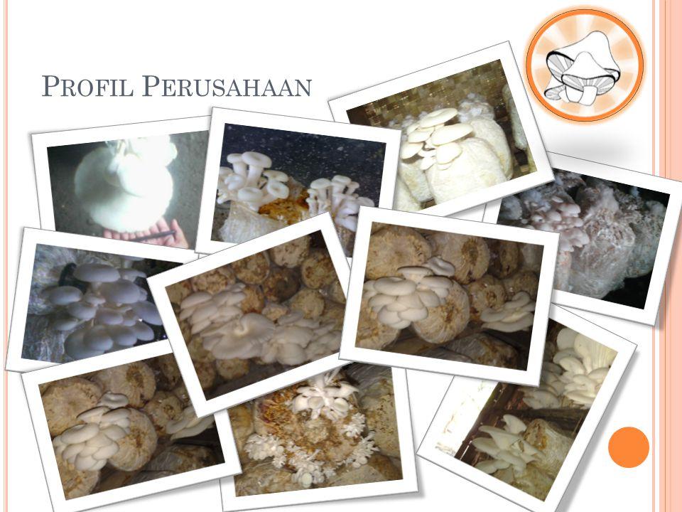 K EUNTUNGAN B UDIDAYA J AMUR T IRAM DI K AMPOENG D JAMOER Y OGYAKARTA Ketersediaan bibit dan media tanam, Bermitra dengan beberapa supplier bibit dan media tanam jamur tiram.