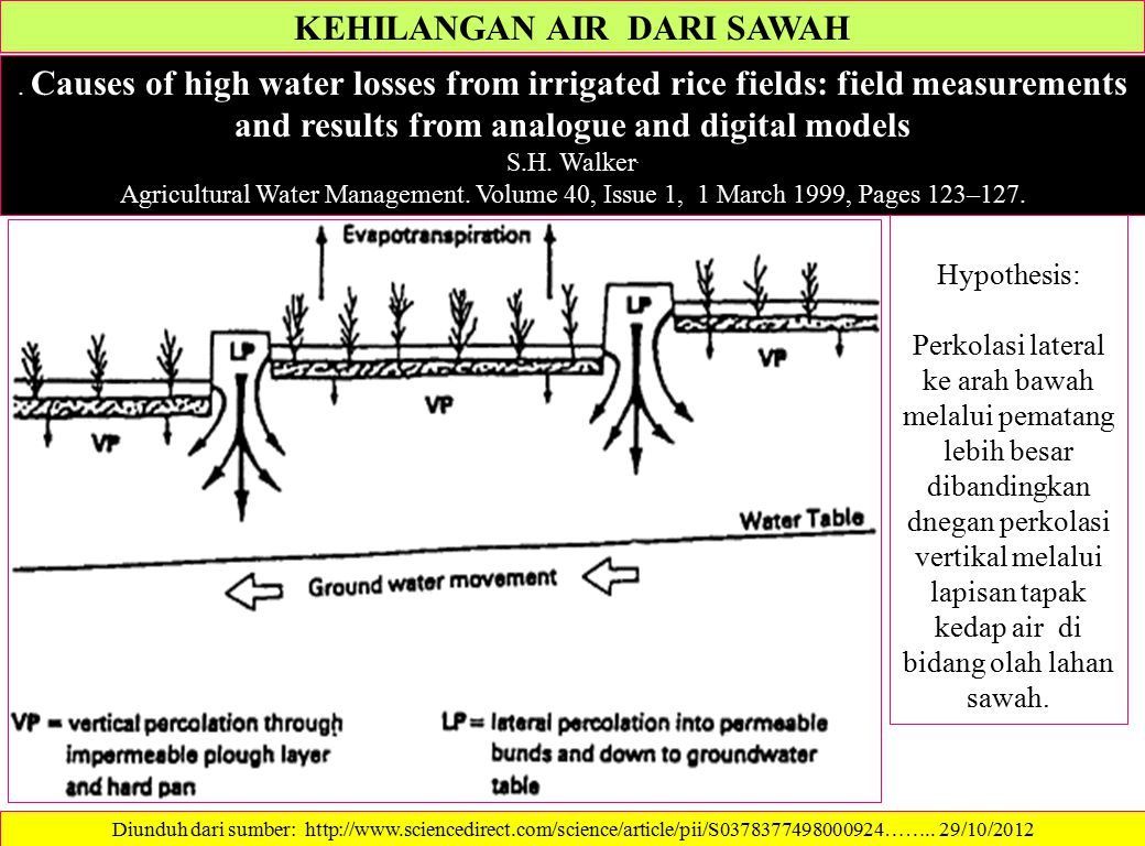 KEHILANGAN AIR DARI SAWAH. Causes of high water losses from irrigated rice fields: field measurements and results from analogue and digital models S.H