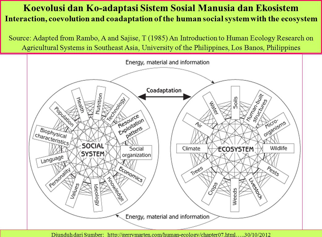 Koevolusi dan Ko-adaptasi Sistem Sosial Manusia dan Ekosistem Interaction, coevolution and coadaptation of the human social system with the ecosystem Source: Adapted from Rambo, A and Sajise, T (1985) An Introduction to Human Ecology Research on Agricultural Systems in Southeast Asia, University of the Philippines, Los Banos, Philippines Diunduh dari Sumber: http://gerrymarten.com/human-ecology/chapter07.html…..30/10/2012