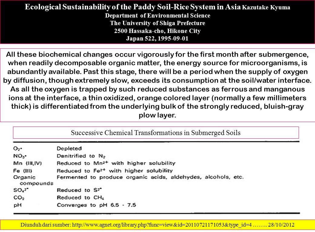Ecological Sustainability of the Paddy Soil-Rice System in Asia Kazutake Kyuma Department of Environmental Science The University of Shiga Prefecture 2500 Hassaka-cho, Hikone City Japan 522, 1995-09-01 All these biochemical changes occur vigorously for the first month after submergence, when readily decomposable organic matter, the energy source for microorganisms, is abundantly available.