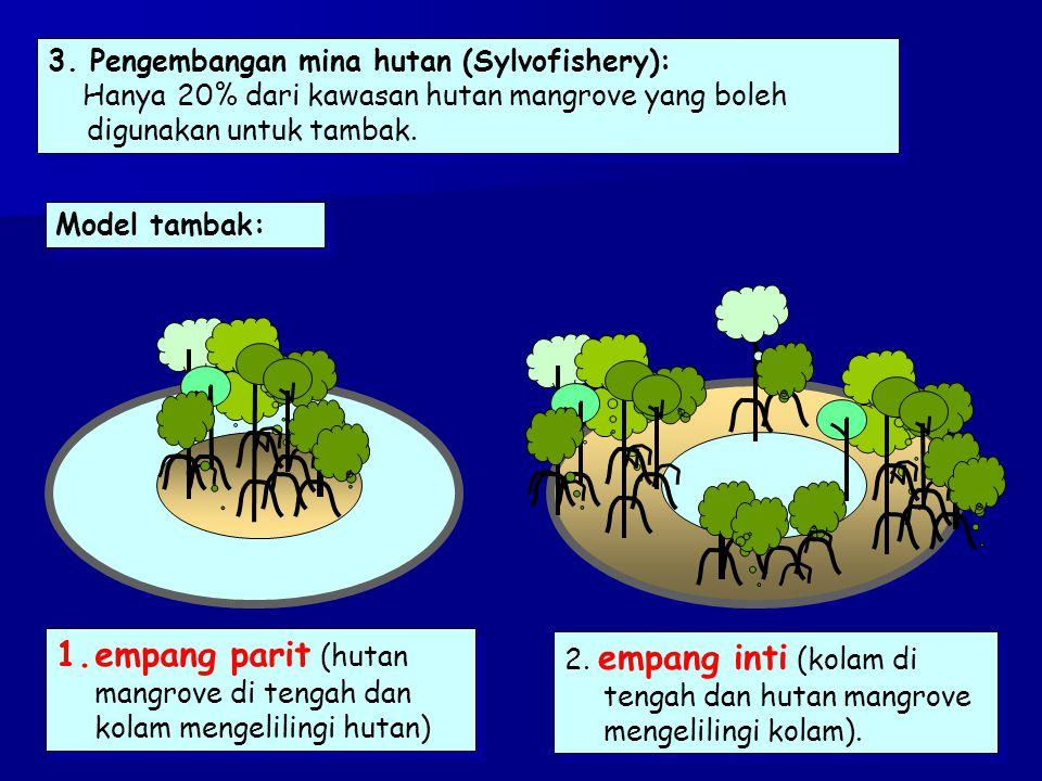 3. Pengembangan mina hutan (Sylvofishery): Hanya 20% dari kawasan hutan mangrove yang boleh digunakan untuk tambak. 3. Pengembangan mina hutan (Sylvof