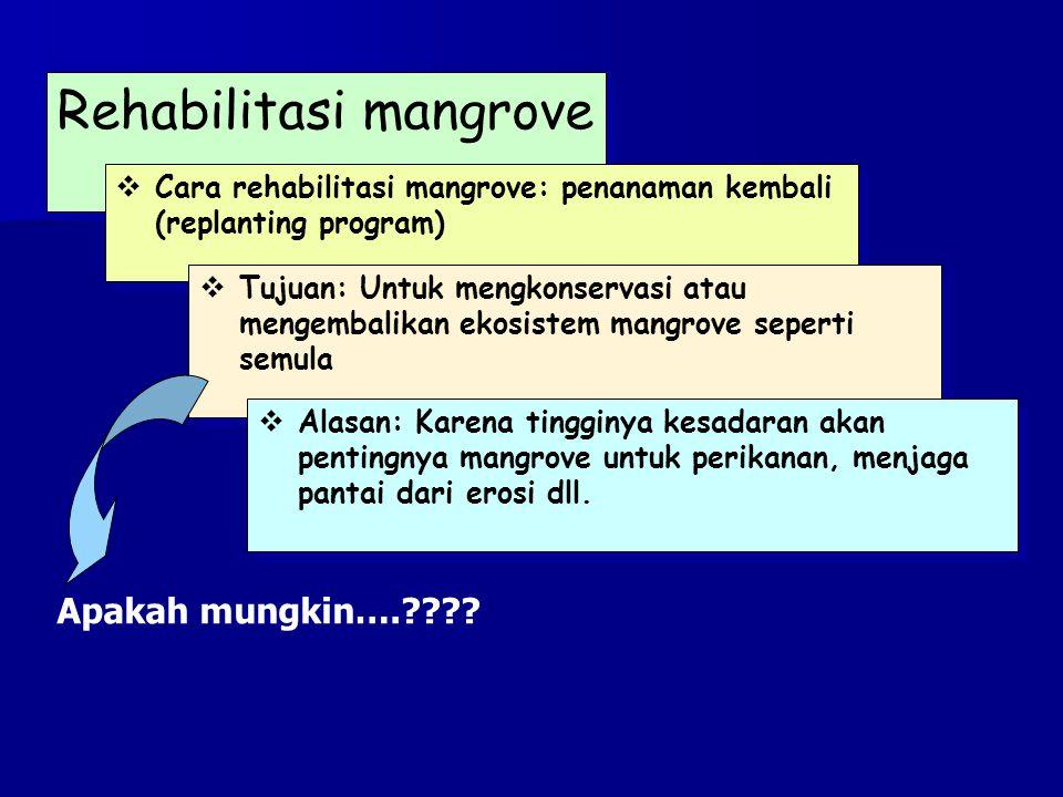 Rehabilitasi mangrove  Cara rehabilitasi mangrove: penanaman kembali (replanting program)  Tujuan: Untuk mengkonservasi atau mengembalikan ekosistem mangrove seperti semula  Alasan: Karena tingginya kesadaran akan pentingnya mangrove untuk perikanan, menjaga pantai dari erosi dll.