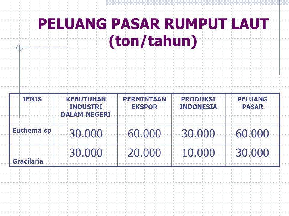 PELUANG PASAR RUMPUT LAUT (ton/tahun) JENISKEBUTUHAN INDUSTRI DALAM NEGERI PERMINTAAN EKSPOR PRODUKSI INDONESIA PELUANG PASAR Euchema sp 30.00060.0003