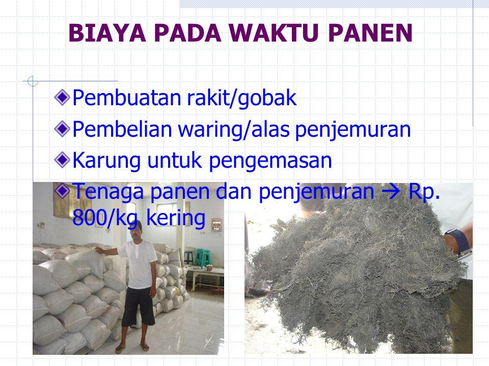 BIAYA PADA WAKTU PANEN Pembuatan rakit/gobak Pembelian waring/alas penjemuran Karung untuk pengemasan Tenaga panen dan penjemuran  Rp. 800/kg kering